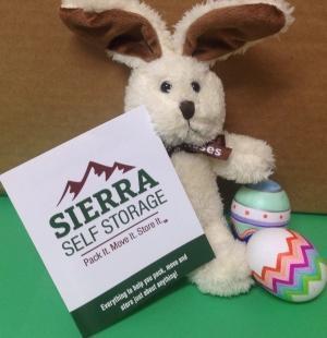Sierra Self Storage Logo Easter 300